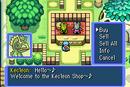 Kecleon shop2