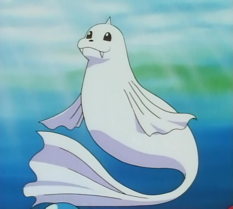 Misty's Dewgong | Pokémon Wiki | FANDOM powered by Wikia