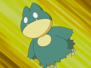 May Munchlax
