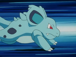 Whitney Nidorina Tackle