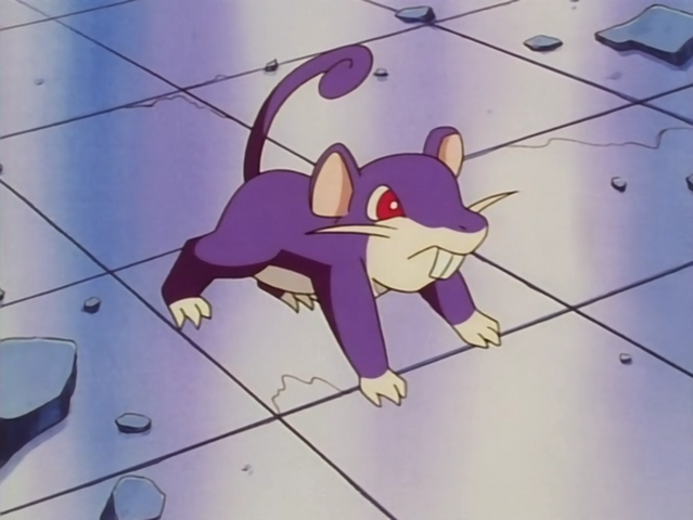 File:Nurse Joy Rattata.png