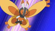 Trainer Mothim