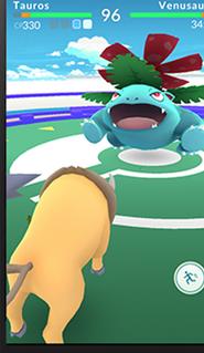 Pokemon Go 8