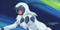 Mollie's Absol