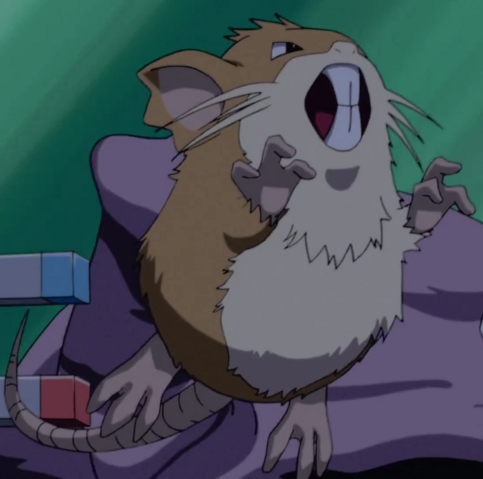 File:Team Rocket Raticate.png