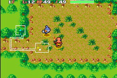 File:Pokemon Mystery Dungeon Sinister Woods.PNG