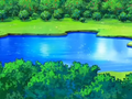 Lake Psyduck.png