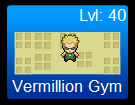 Vermillion Gym Challenge Level