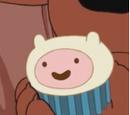Ciasteczka Finna
