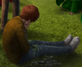 Ron Weasley.png