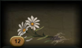 DaisyRoots.png
