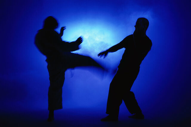 File:MartialArtsTraining.jpg