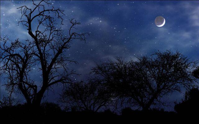 File:Night-time.jpg