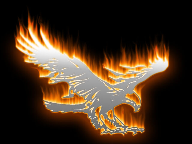 File:01 Aguia fogo final---na frente.jpg