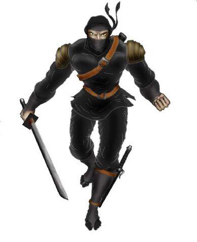 File:20070704000157!Ninja.jpg