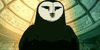 Owl Physiology