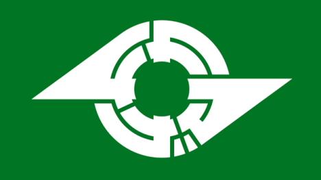 File:Flag 111.jpg