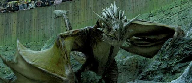 File:Horntail Dragon Harry Potter.jpg
