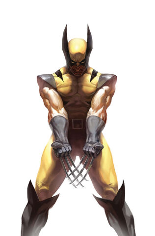File:Wolverine Vol 3 73 Variant Frame Textless.jpg