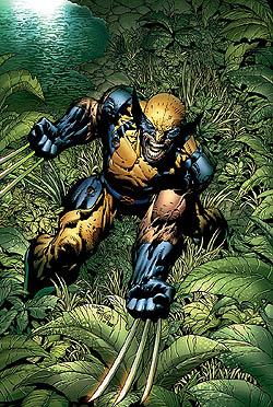 File:Marvelwolverine.jpg