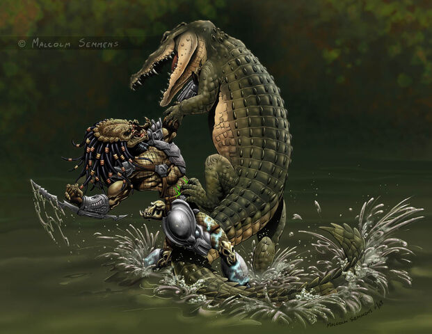 File:Predator vs croc colours by malsem-d6sufoo.jpg
