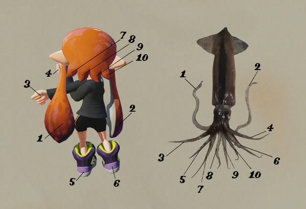 File:Inkling VS Squid.jpg
