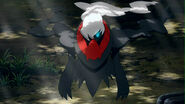 Enter-darkrai