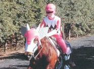 Pinkhorse