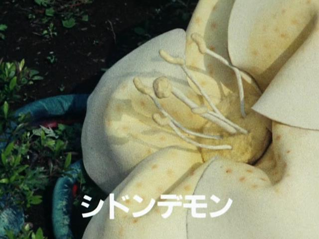 File:シドンデモン.jpg