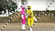 ToQger 9 - Yellow & Pink Swap