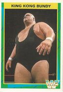1995 WWF Wrestling Trading Cards (Merlin) King Kong Bundy 138