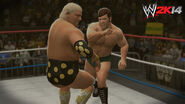 WWE 2K14 Screenshot.131