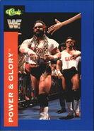 1991 WWF Classic Superstars Cards Power & Glory 49