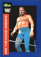 1991 WWF Superstars Cards Jake Roberts 73