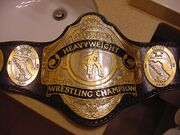 NWA Florida Champion (2)