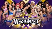 WM30 Divas Championship Match