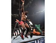 WrestleMania 22.13