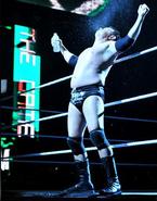 July 25, 2011 RAW 25