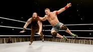 WWE World Tour 2014 - Dublin.12