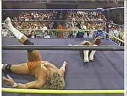 Great American Bash 1990.00004