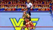 WWF WrestleFest.5