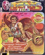 Sensacional de Luchas 234