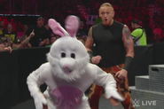 Heath-slater-bunny