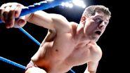 WrestleMania Revenge Tour 2012 - Belfast.1