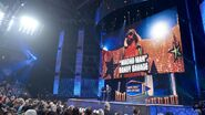 WWE Hall of Fame 2015.63
