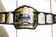 WWF World Tag Team Champion
