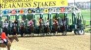 The Preakness 2