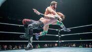 WrestleMania Revenge Tour 2016 - Belfast.7