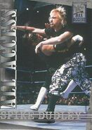 2002 WWF All Access (Fleer) Spike Dudley 29