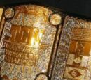 TCW Heavyweight Championship